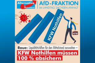 KFW Nothilfen müssen 100 % absichern