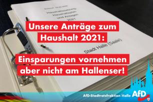 Haushalt 2021 – das will die AfD